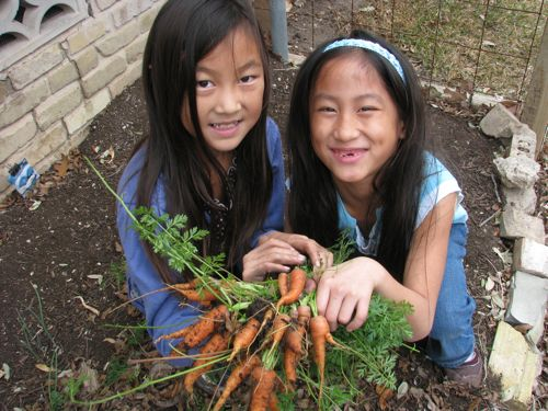 Here are Cherry and Coco with their carrot crop.
